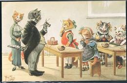 Chats Humanisé-dressed Cats -katzen - Poezen In School - Cats