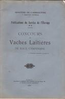 Namur, Concours De Vaches Laitières De Race Campinoise 1924. - 1901-1940