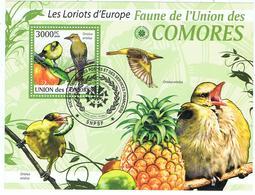 Loriot / Loriots / BF Oblitéré / Union Des Comores - Pájaros Cantores (Passeri)