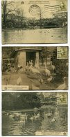 CPA - Beau Petit Lot De 8 Cartes Postales - Belle Oblitération - Jardin Zoologique D'Anvers - 1920 ( MF11344) - Antwerpen