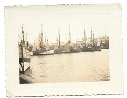 Bateaux De Pêche Au Port De Blankenberge  Photo 11x8,5 - Barche