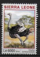 SIERRA LEONE  N°  5973  * *  Autruches - Straussen- Und Laufvögel