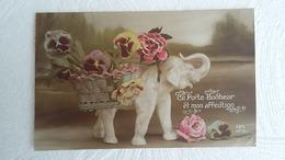 CPA - Langage Des Fleurs Ce Porte Bonheur Et Mon Affection  Edit : DIX - Blumen
