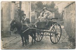 THOUARS - Carte Photo - Attelage, Produits Vétérinaires Ph. Ménard - Thouars