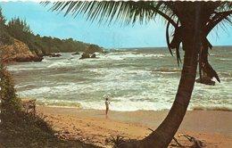 TRINIDAD & TOBAGO - Toco North East Trinidad - Postkaarten