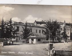 CANINO-VITERBO-ACCESSO AL PAESE-CARTOLINA VERA FOTOGRAFIA-VIAGGIATA IL 30-10-1951 - Viterbo