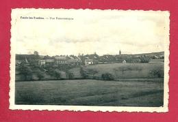 C.P. Faulx-les-Tombes =  Vue  Panoramique - Gesves