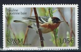 Saint Pierre And Miquelon, Bird, Bay-breasted Warbler, 2019, MNH VF - St.Pierre & Miquelon