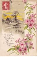 """CARTE FANTAISIE. CPA GAUFREE..  """" AMITIÉ DOUCE ET SINCÈRE"""" .FLEURS ET PAYSAGE ANNÉE 1910 - Autres"""