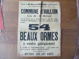 HALLUIN LE 21 NOVEMBRE 1910 54 BEAUX ORMES A VENDRE LIEU DIT LE MOLINEL FERME OCCUPEE PAR M. DAL 40cm/30cm - Afiches