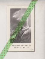 Maria Rosalia Van Thielen-Peeters, Sint-Stevens-Woluwe 1912, 1958 - Obituary Notices