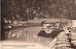 34 - CAPESTANG - CANAL DE NAVIGATION DU MIDI - LE PORT DES BARQUES - Capestang