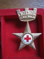 Italia Sanità Militare Fregio Da Berretto NO PAYPAL (FM147) - Airforce