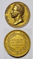 MEDAILLE - BOITE DUC ANGOULEME 1823 CAMPAGNE D'ESPAGNE. LAITON. - Royal / Of Nobility