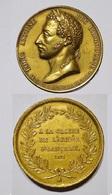 MEDAILLE - BOITE DUC ANGOULEME 1823 CAMPAGNE D'ESPAGNE. LAITON. - Monarchia / Nobiltà