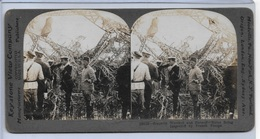 Keystone Photograph FRENCH TROOPS INSPECTING A WRECKED ZEPPELIN CRASH Card (RN-14) - 1914-18