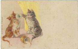 Chat  Coquet - Katten