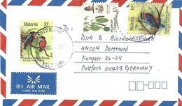 Malaysia 1994 Kota Berru Blue-eared Kingfisher Alcedo Meninting Rufous-collared Kingfisher Halcyon Concreta Cover - Piciformes (pájaros Carpinteros)