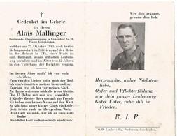 Sterbebild ,carte De Décès LUFTWAFFE , Camp De Prisonniers , 1945 : SIBERIE . DEATH CARD - 1939-45