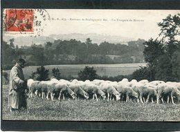 CPA - Environs De BOULOGNE SUR MER - Berger Et Son Troupeau De Moutons - Boulogne Sur Mer