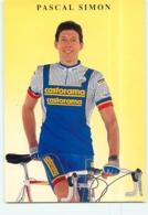 Pascal SIMON . 2 Scans. Cyclisme. Castorama - Cycling