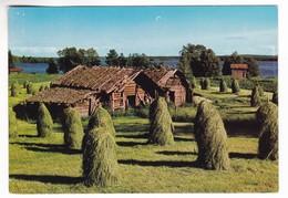 CP1203 Finland Finnish Country Landscape With Vintage Haystacks Pays Finlandais Avec Des Meules De Foin - Finlande