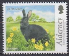 Alderney 2015 (Mi 529) (MNH) - Black Rabbit (Oryctolagus Cuniculus Forma Domestica) - Konijnen