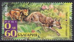 Bulgaria 2008 (MNH) (Mi 4860) - Golden Jackal (Canis Aureus) - Hunde