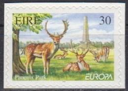 Ireland 1999 (Mi 1142) - Phoenix Park - Red Deer (Cervus Elaphus) (sa) - Wild