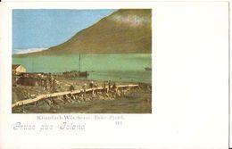 GRUSS AUS ISLAND  Klippfisch Wächerei ESKE FJORD 173 DANMARK 1118 D2 - Iceland