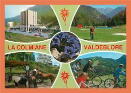 A400 / 435 06 - LA COLMIANE VALDEBLORE Multivues - France