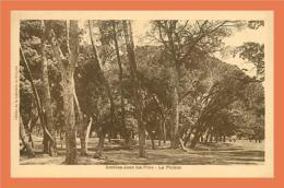 A239 / 519 06 JUAN LES PINS La Pinede - Antibes