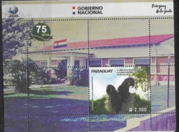PARAGUAY, 2019, MNH,BIRDS, PARROTS, HEALTH, 75th ANNIVERSARY OF INAUGURATION OF PO'I ISLAND CLINIC, FLAGS, S/SHEET - Pappagalli & Tropicali
