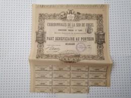 Charbonnages De La Seo De Urgel En Espagne, Concessions Minerva Et Elisa - Pétrole
