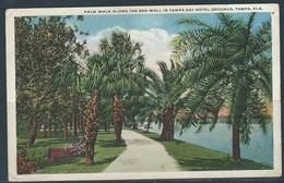 0339 - USA - FLORIDA - TAMPA - Tampa