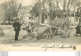 WW 24 DORDOGNE. Attelage Périgourdin 1902 - France
