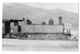 SAINT MARTIN DU VAR (06) Photographie Format Cpa Locomotive Ligne De Digne à Nice 1947 - Cannes