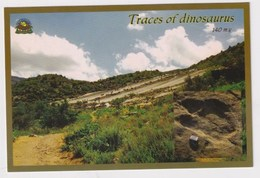 TURKMENISTAN - AK 371923 Traces Of Dinosaurs - Turkménistan