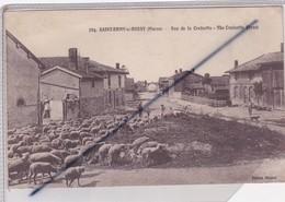 Saint Rémy Sur Bussy (51) Rue De La Croisette -The Croisette Street (berger Et Moutons) - Francia