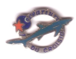B43 Pin's Squale REQUIN OCEARIUM DU CROISIC LE CROISIC LOIRE QUALITÉ EGF Aquarium Achat Immédiat - Animaux