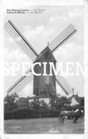 De Molen -Sint-Martens-Latem - Sint-Martens-Latem
