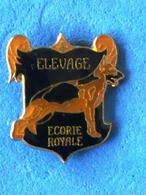 ELEVAGE ECURIE ROYALE  Port Et Frais Inclus - Animaux