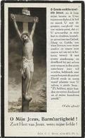 DP. JOANNA VAN OSTAEYEN ° RIJCKEVORSEL 1845- + WORTEL 1924 - Religion & Esotericism