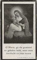 DP. PETRUS LAMBRECHTS ° HOEVENEN 1876- + STABROECK 1924 - Religion & Esotericism