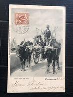 TAORMINA  CARRO TIRATO DAI BUOI 1902   COSTUMI - Costumi