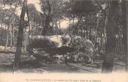 85 - NOIRMOUTIER - Le Rocher Du Pré-Lavé (Bois De La Chaize) - Noirmoutier