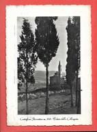 Castiglion Fiorentino (FI) - Viaggiata - Italia