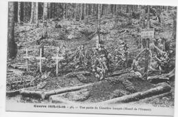 Guerre 1914 15 16 UNE PARTIE DU CIMETIÈRE FRANÇAIS MASSIF DE L'ORMONT  Militaria Guerre 1914-1918 - War 1914-18