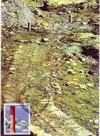 HELVETIA MARTINGNY MAXIMUM VOI ROMANIE DU GRAND SANINT BERNARD  POST CARD   (GENN2001170) - Geografia