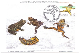 HELVETIA NATURAL INSTITUTE OF SCIENCES IN BELGIUM MAXIMUM  POST CARD   (GENN2001188) - Natura